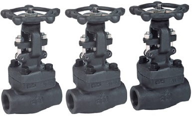 ASTM A105N forged gate valves manufactured to API 602