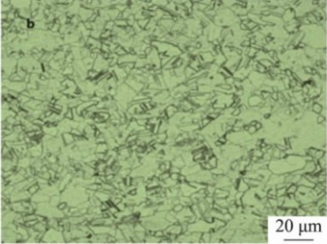 Microstructure of Inconel 600 specimen after solution treated at 1000°C.