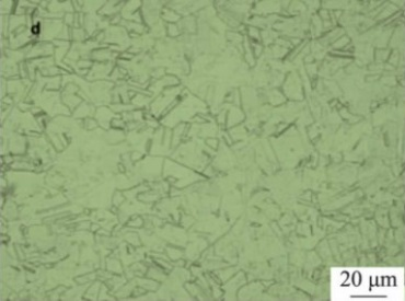 Microstructure of Inconel 600 specimen after solution treated at 1100°C.