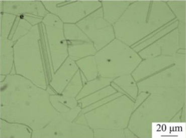 Microstructure of Inconel 600 specimen after solution treated at 1150°C.