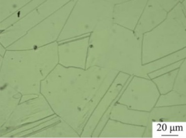 Microstructure of Inconel 600 specimen after solution treated at 1200°C.