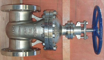 A SS316 gate valve with Monel K-500 trim.