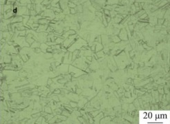 inconel-600-microstructure-after-solution-at-1100