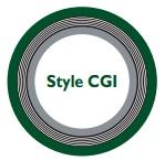 Style CGI spiral wound gasket.